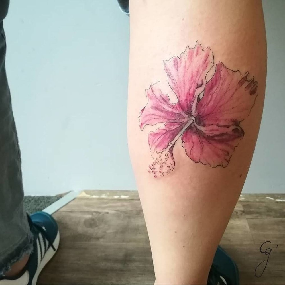 Panama series hibiscus